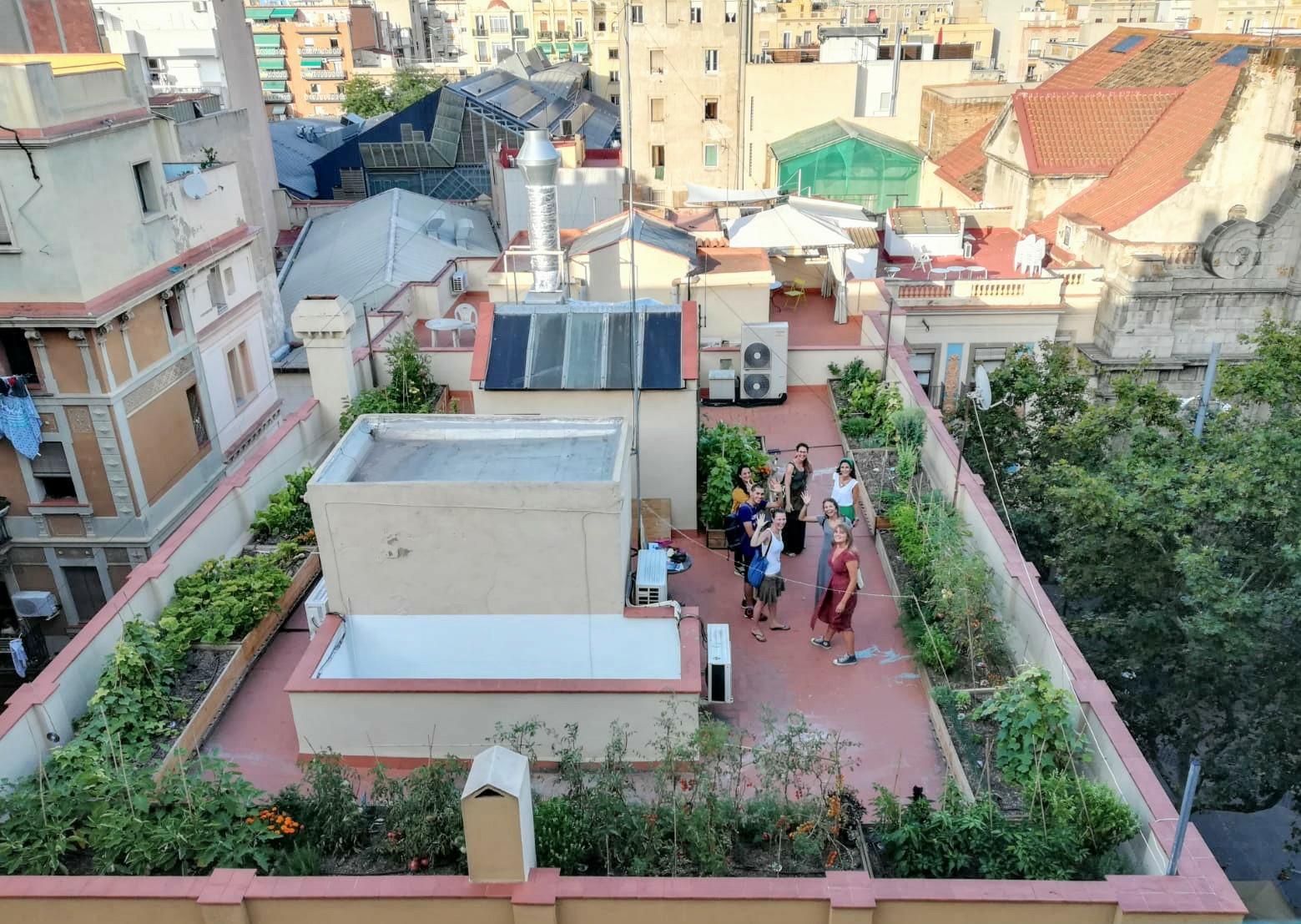 Huerto urbano terraza