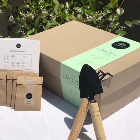Kit de cultivo plantas comestibles