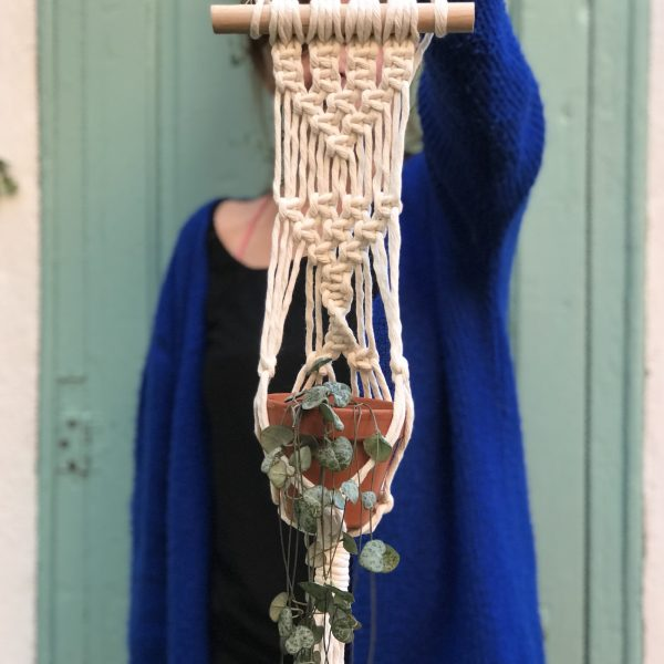 Ceropegia woodii macrame
