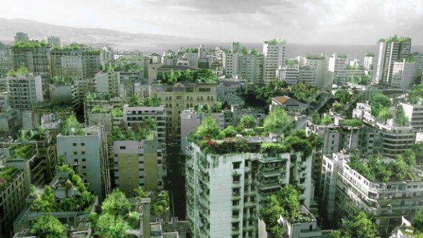 Beirut - azoteas verdes