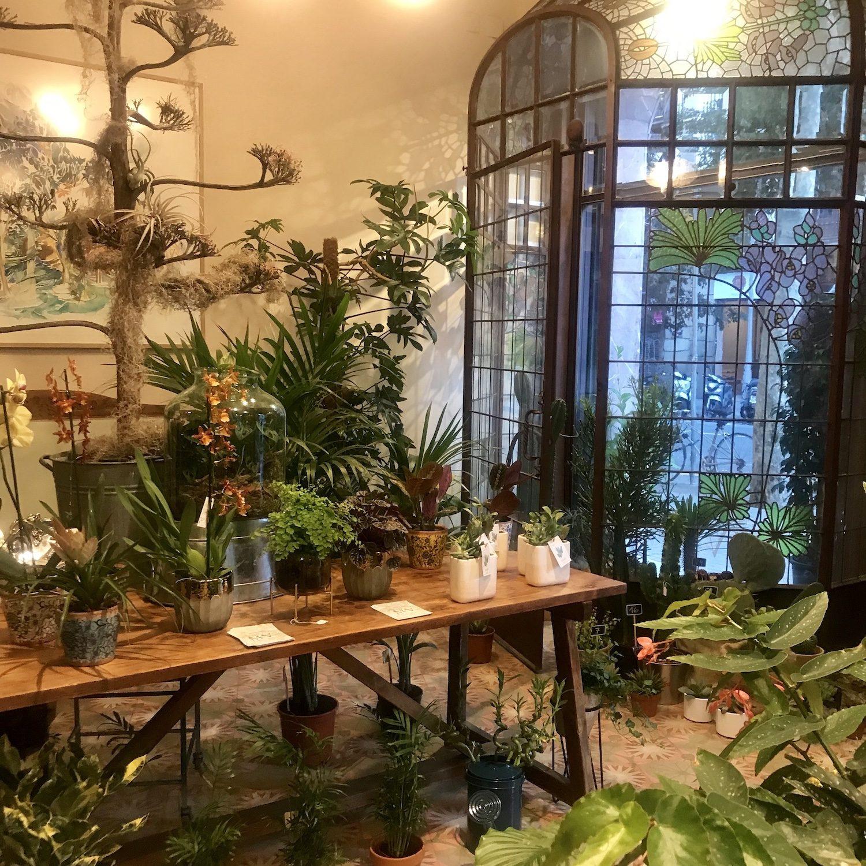 Talleres Verdópolis en laboratorio botánico marea verde